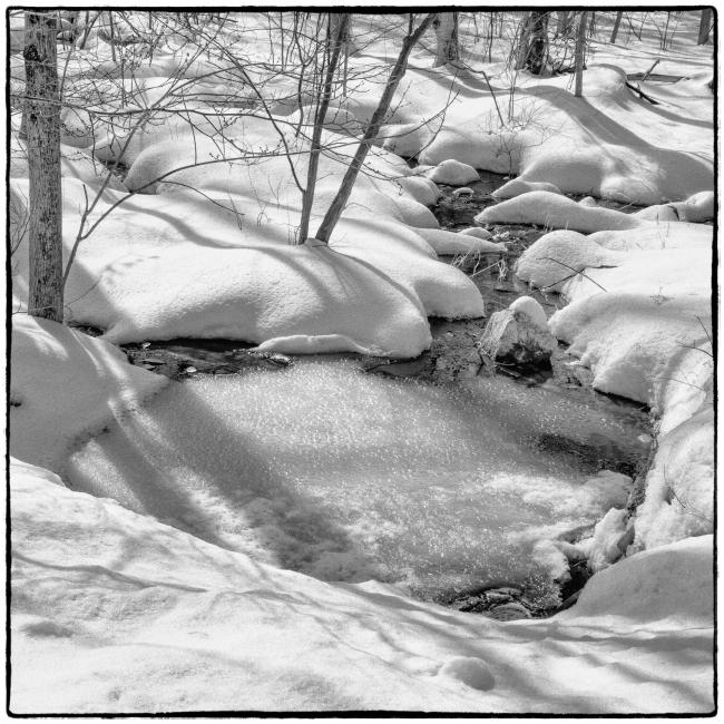 snowscape-1