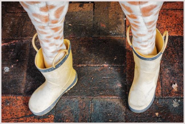 giraffeinboots-1