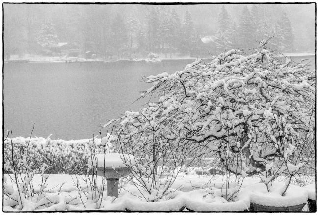snowylake-1
