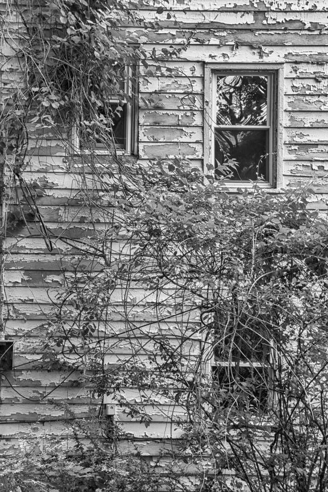 abandonedhouseon6n-4