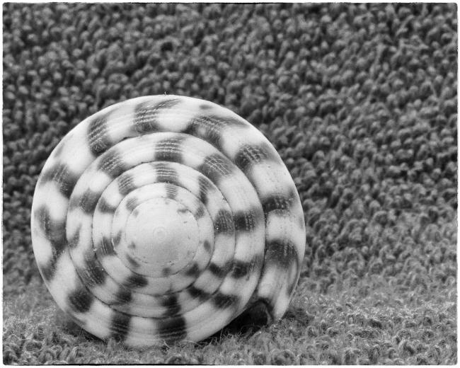 offsetspiral-1