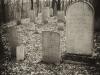 baxter-cemetery-11