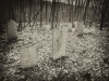 baxter-cemetery-12