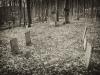 baxter-cemetery-13
