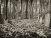 baxter-cemetery-17