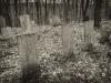 baxter-cemetery-18