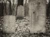 baxter-cemetery-19