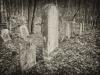baxter-cemetery-8