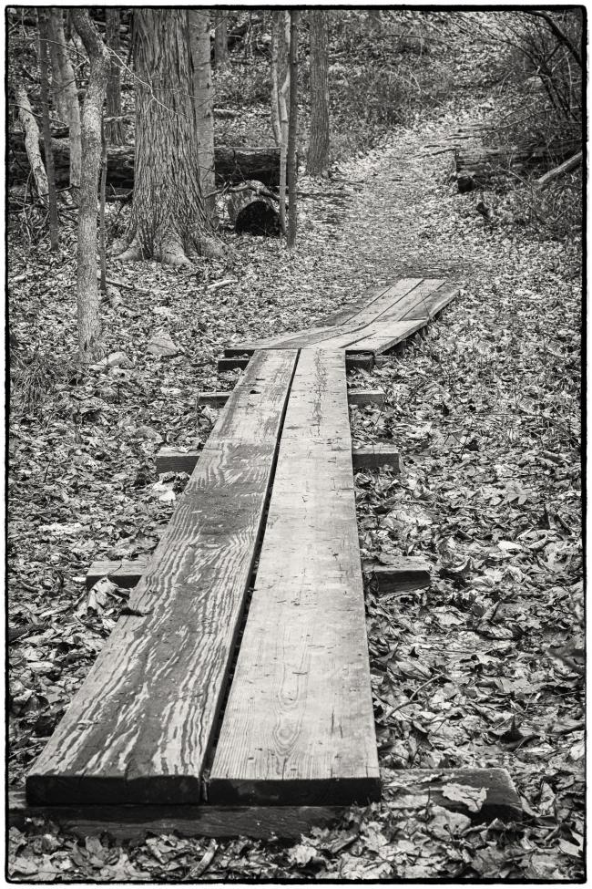boardwalksteatown-2