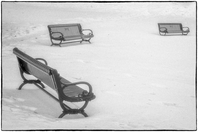 bencheslawpark-1