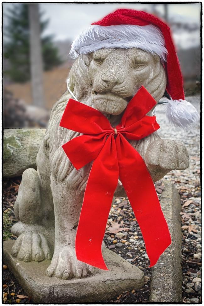 Christmas Lion-1