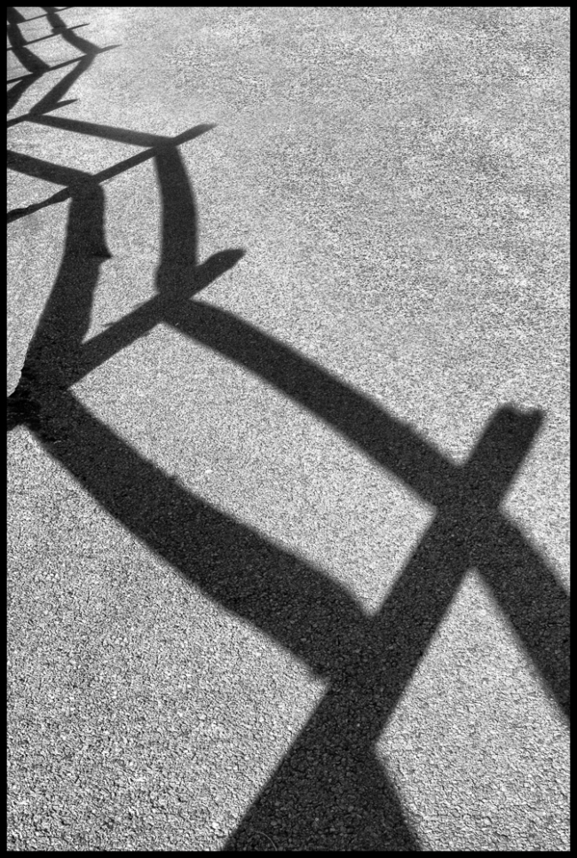 fencepostshadows