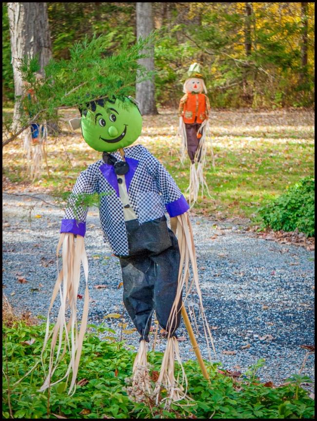 halloweenScarecrow-4-of-4