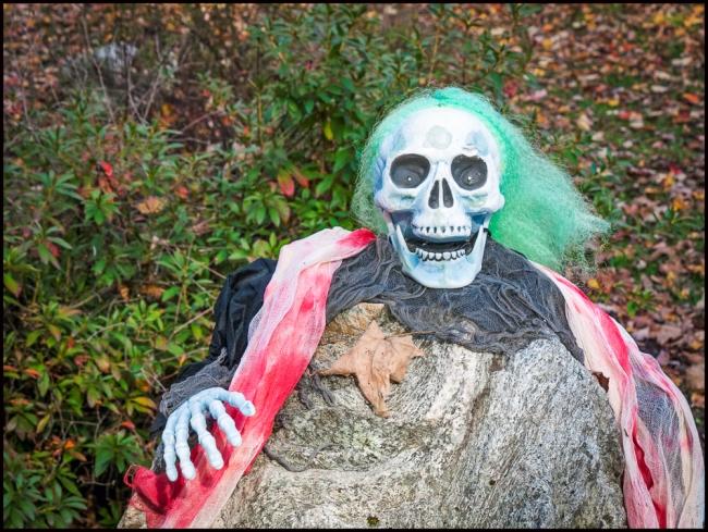 halloweenSkull-1-of-3