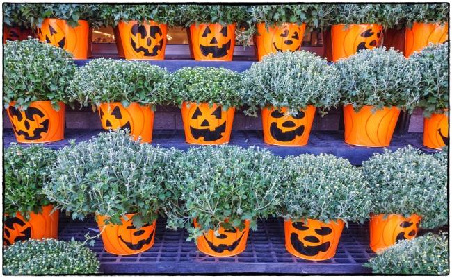 halloweencoming-1