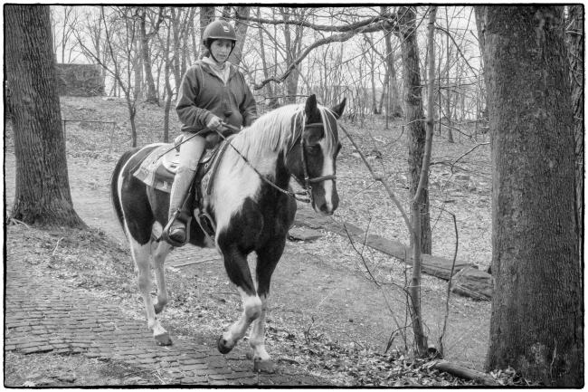 horse&rider-1