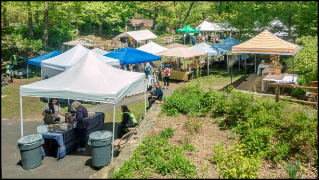 teatownplantfest-1