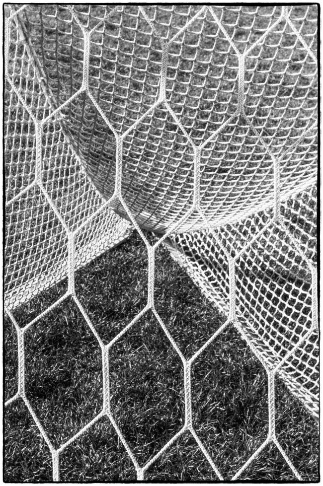 nets-1