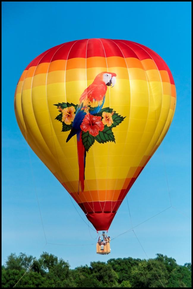 balloonsinflight-1
