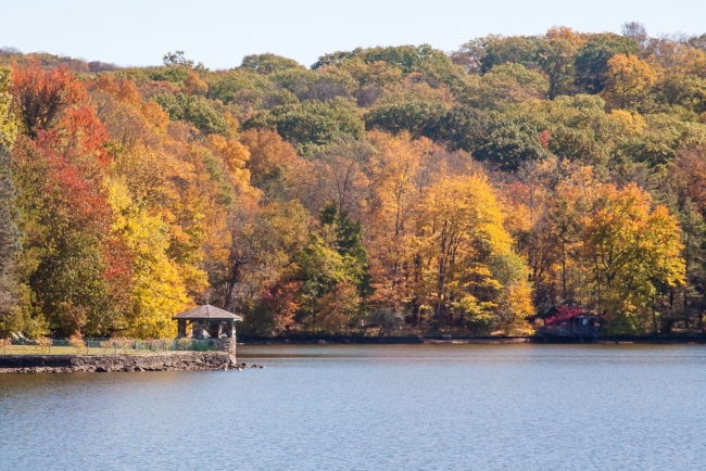 lakefallfoliage-2-of-6
