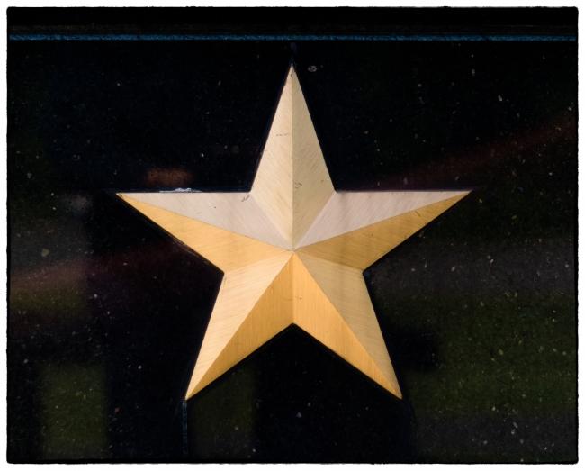 veteransmemorialparkgoldstarmother-2