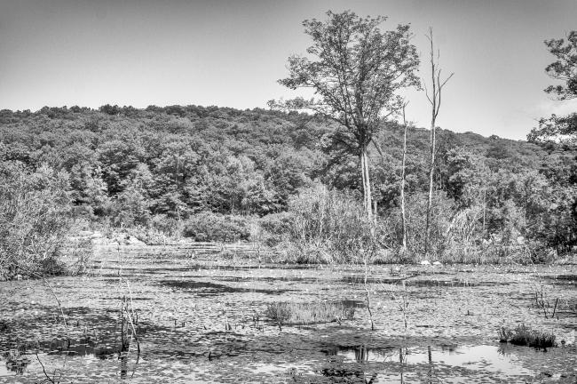 appalachian-hiddenvalley-2