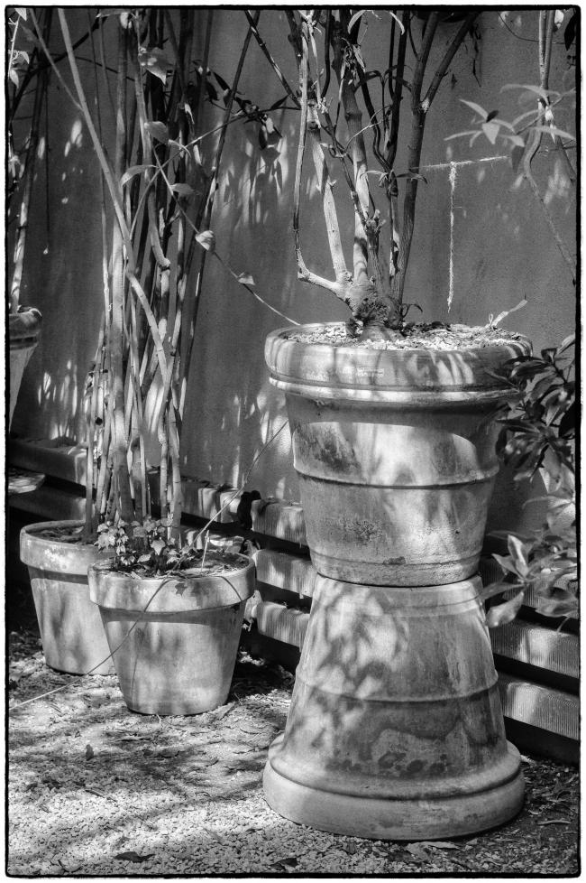 plantpots-1