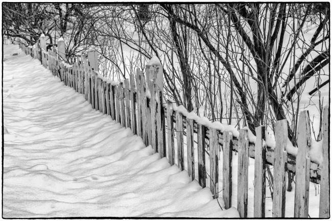 snowaroundthelake-101