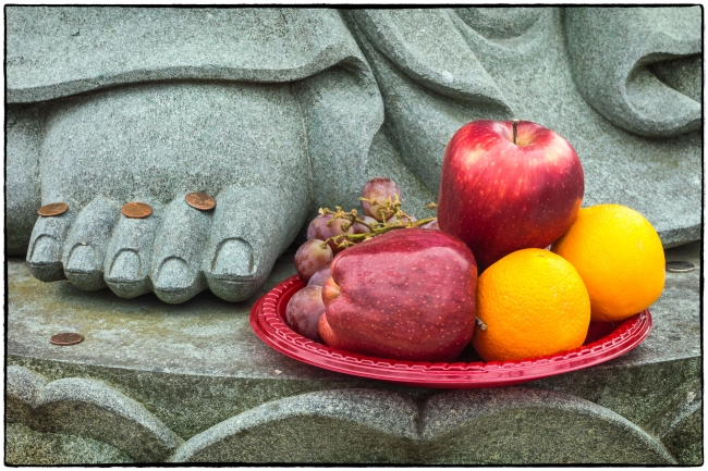 stilllifetoes-1
