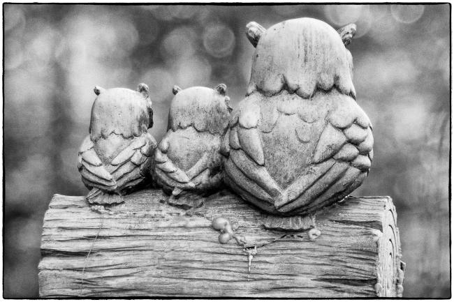threeowls-1