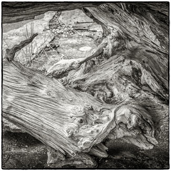 weatheredwood-1