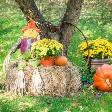 weekly-picks-10-14-2012-4-of-8